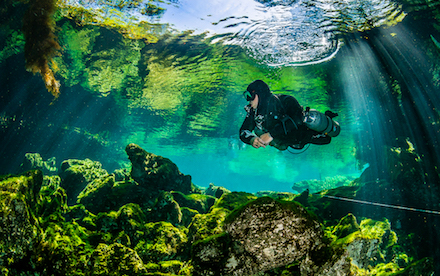 Cenote Diving 05